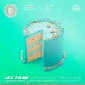 Jay Park Birthday Gamble cover.png