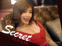 Secret Jun Hyo Sung Posion concept photo