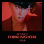 VIINI Dimension promo photo 5