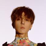 Mino XX promotional photo