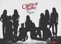 Cherry Bullet group reveal teaser