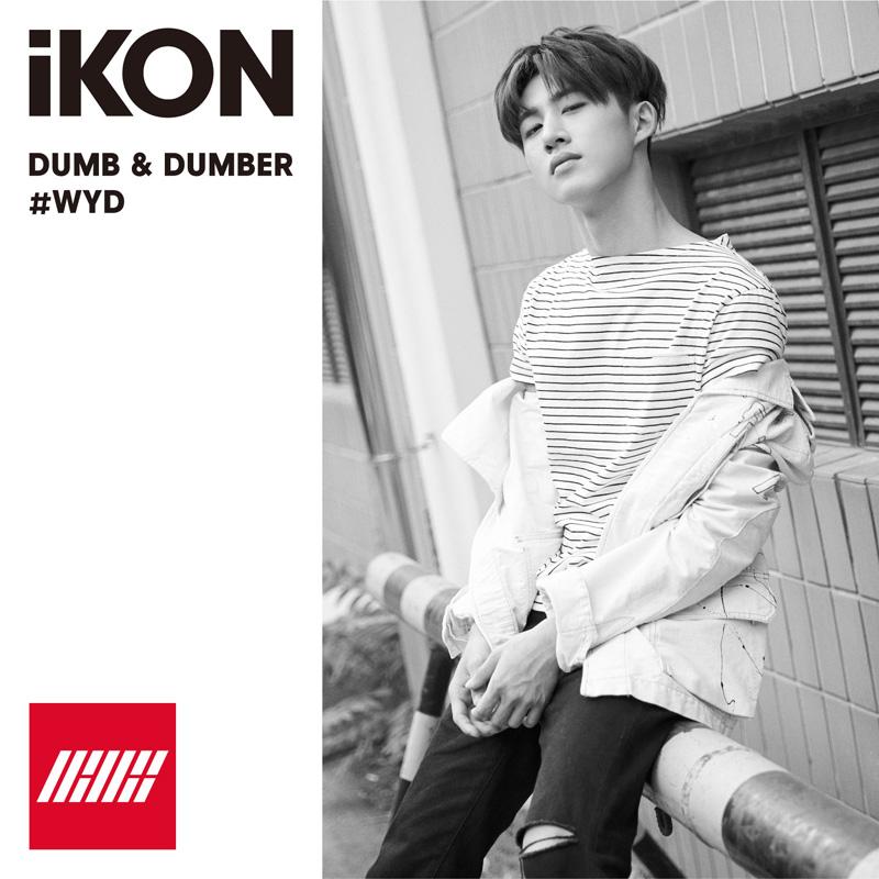 Dumb and dumber ikon itunes free