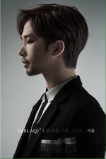 MBLAQ G.O Mirror concept photo (2)