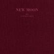 AOA New Moon album cover
