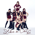 AOA Like a Cat Japanese digital cover.png