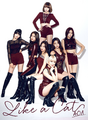 AOA Like a Cat Japanese CD cover.png