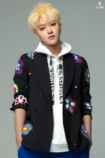 Z.TAO Collateral Love promotional photo