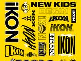 New Kids : Begin (single)