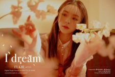 Elkie I dream promo photo 3