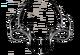 History logo1