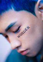 Crush Wonderlost promo photo