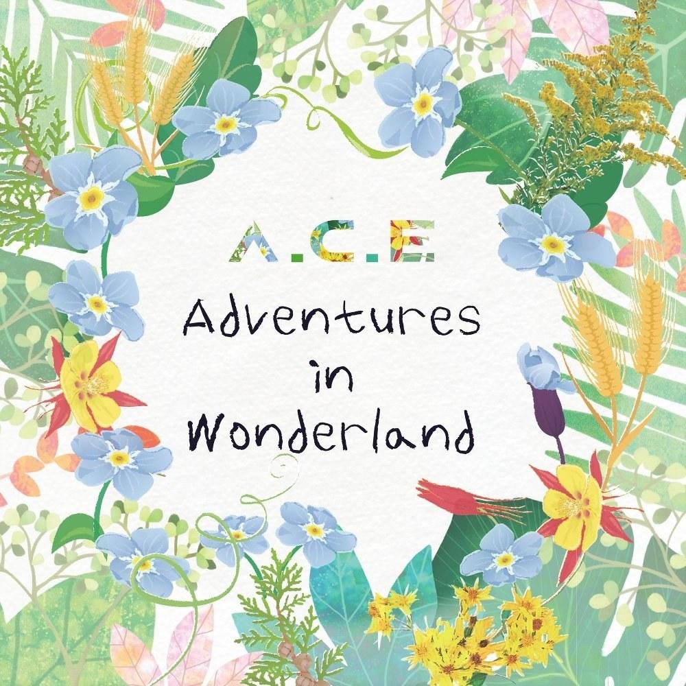 Картинки по запросу ace adventures in wonderland