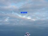 Wave (Colde)