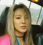 Hyoyeon pfp