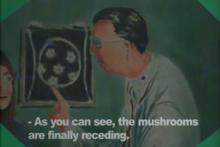 Kgtv doctor