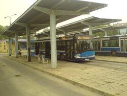 Miszczejowice autobusy