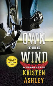OwnTheWindBookCover