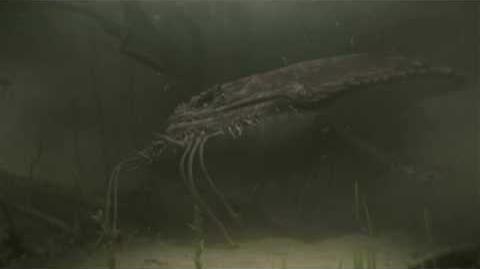 Monster Hunter Tri - Gobul Ecology