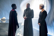 Krypton gallery 106promo 03