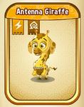 AntennaGiraffeBaby