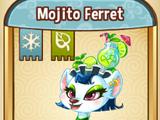 Mojito Ferret