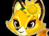 Sunflower Fox