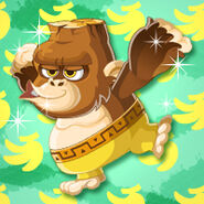 Animal Gorilla