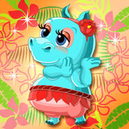 Animal Hippo