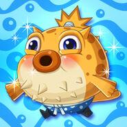 Animal Blowfish