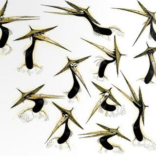 Concept illustrations of Crane by Nicolas Marlet