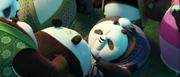 Old-lady-panda