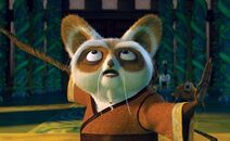 Meester Shifu