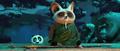 Shifu-meditates.png