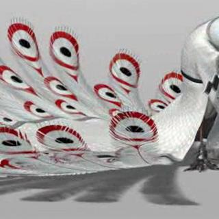 CG model of Shen