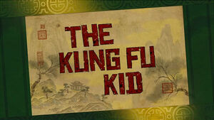 The-kung-fu-kid