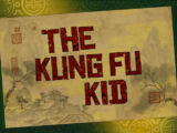 The Kung Fu Kid