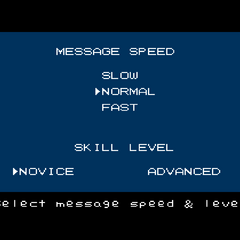 Game settings screen in the Western versions of the game.