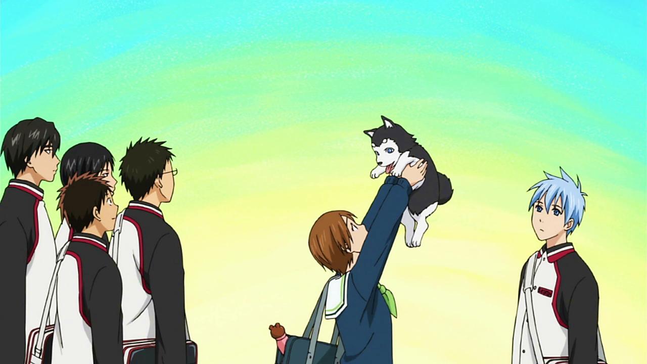 Simple Kuroko No Basuke Anime Adorable Dog - latest?cb\u003d20121119211535  Pic_924024  .png/revision/latest?cb\u003d20121119211535