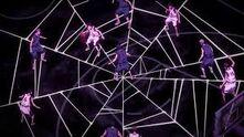 Toile d'araignée d'Hanamiya
