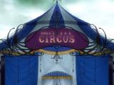 Цирк «Ноев ковчег»