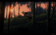 Kuro Running in Forest