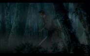 Okata Running Through the Forest Mist