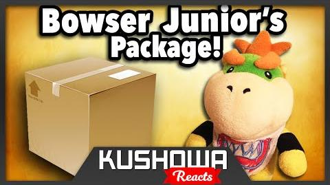 Kushowa Reacts to SML Movie: Bowser Junior's Package!