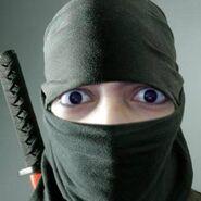 Kushowa Ninja