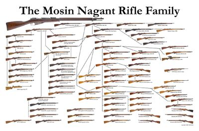 Mosin-Nagant-family-chart-tree