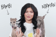 Kylie-jenner-dogs-bambi-norman