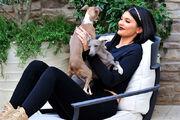 Kylie-jenner-dogs-celeb-snap102015