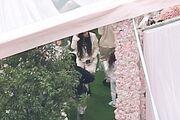 Hbz-kylie-jenner-baby-shower-embed-backgrid-1510613688 orig