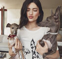 Kylie-jenner-being-investigated-by-animal-control-over-bambi-ftr