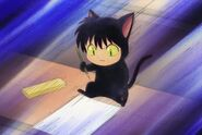 Rokumon at the Black Cat Test